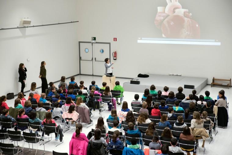 Escuelas Corazon Vitoria (1)