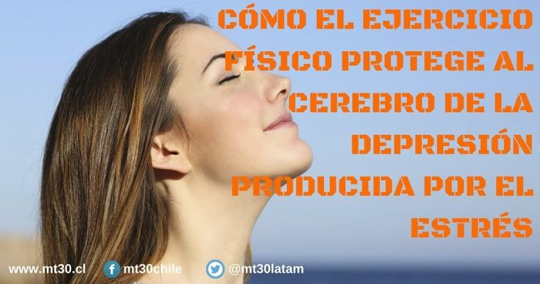 como-el-ejercicio-fisico-proteje-al-cerebro-de-la-depresion-producida-por-el-estres
